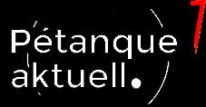 logo schwarz weiß rotes dreieck transparent 227px